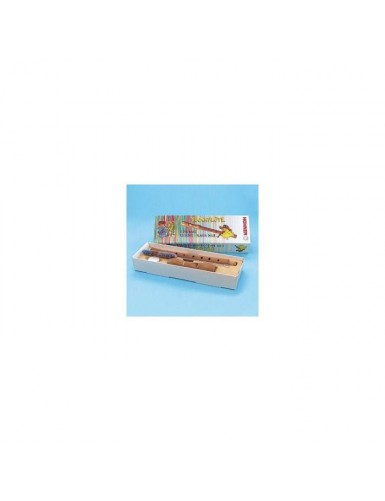 FLAUTA HOHNER 9501 MADERA